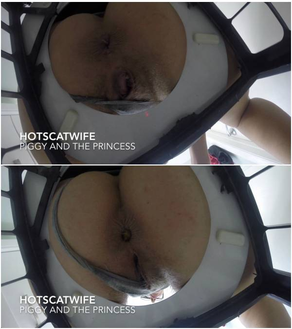 Hotscatwife - PIGGY and THE PRINCESS (mfx scat videos)