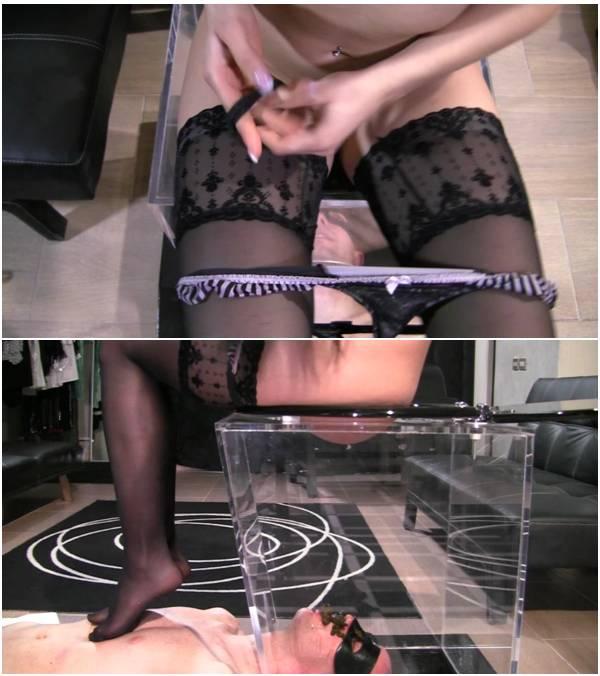 MistressGaia - Cellofan Scat (scat anal video)