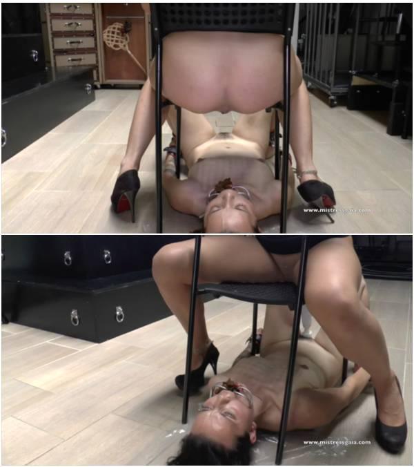 MistressGaia - Human Toilet Slave (scat flash video)