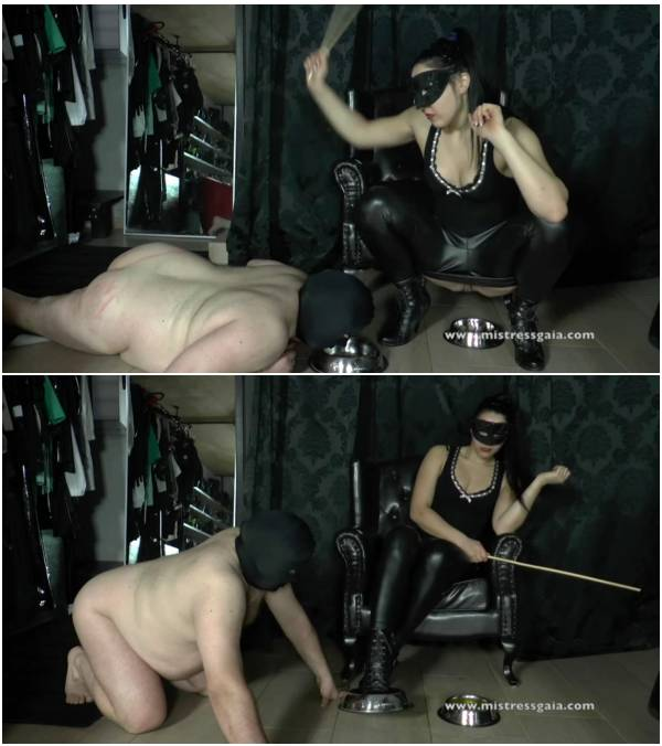 MistressGaia - Training A Slave To Lick My Shit From My Dirty Shoes (watch free scat videos)